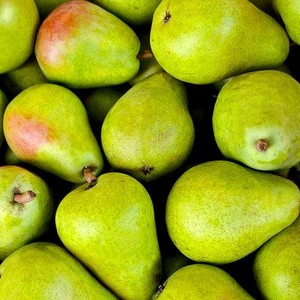 Pears Williams