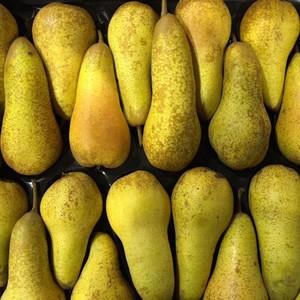 Pears Abate